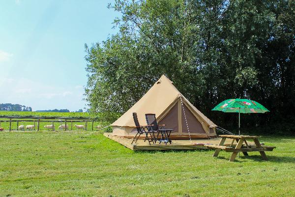 Web Bell tent 8